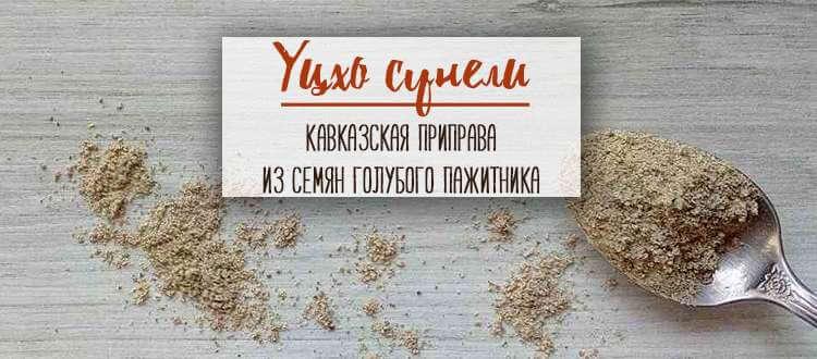 Уцхо сцнели купить Минск
