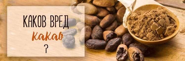 В чем польща и вред какао