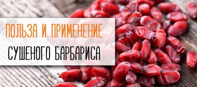 Купить барбарис в Минске